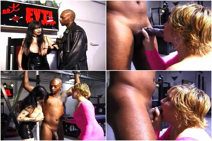 Mistress Rhiannon Megapack-Gigant Tits-clip  64