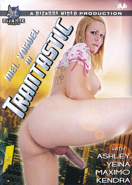 Transtastic (2014)