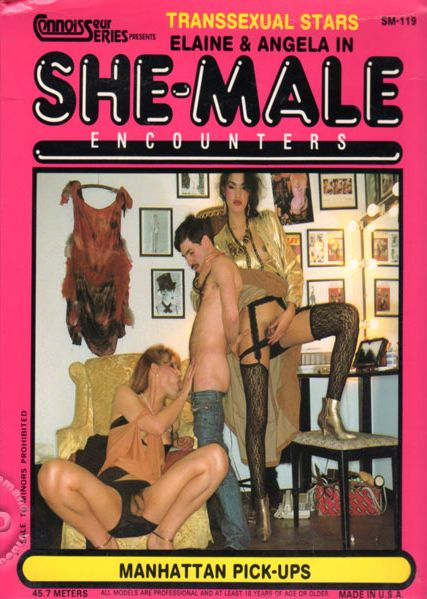 She Male Encounters 119 - Manhattan Pick-Ups (2014)