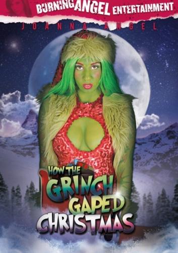 How The Grinch Gaped Christmas (2015) - Joanna Angel