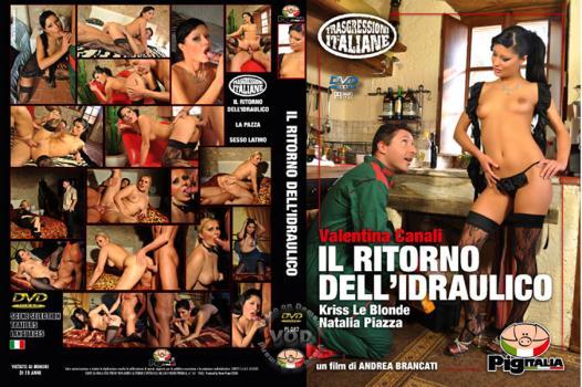 Il Ritorno Dell'Idraulico (2010)