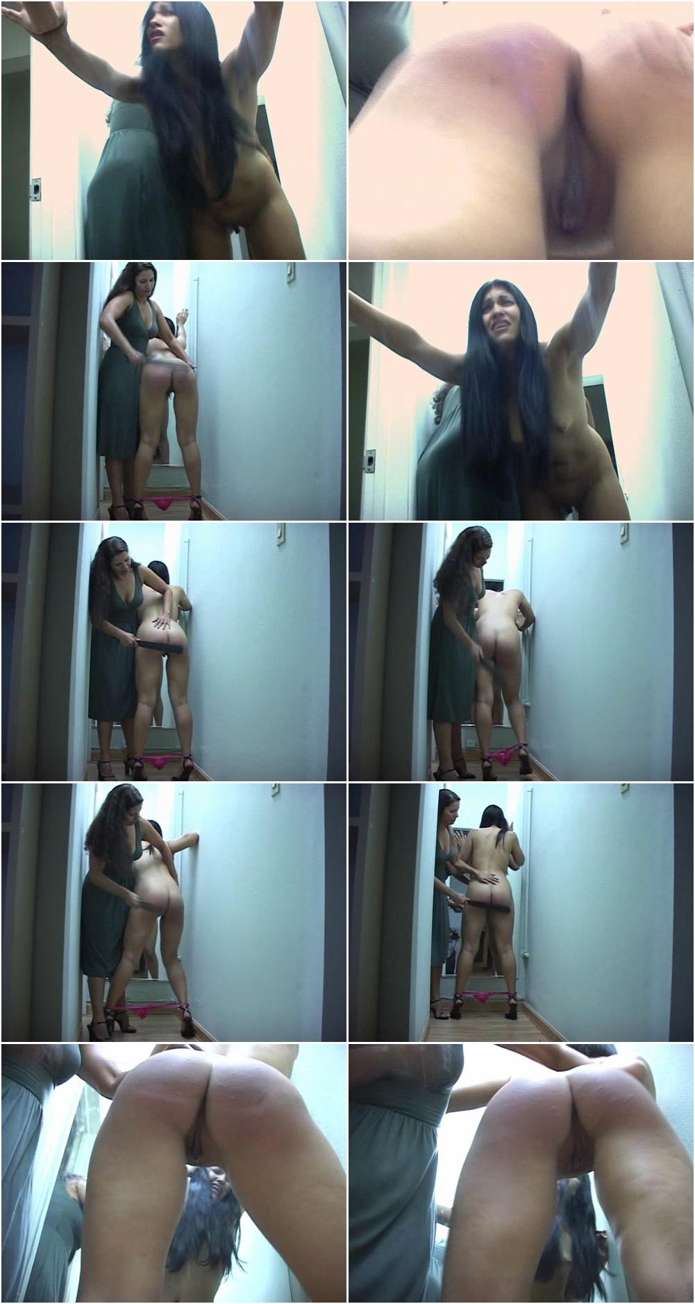 Wife breeding porn tube