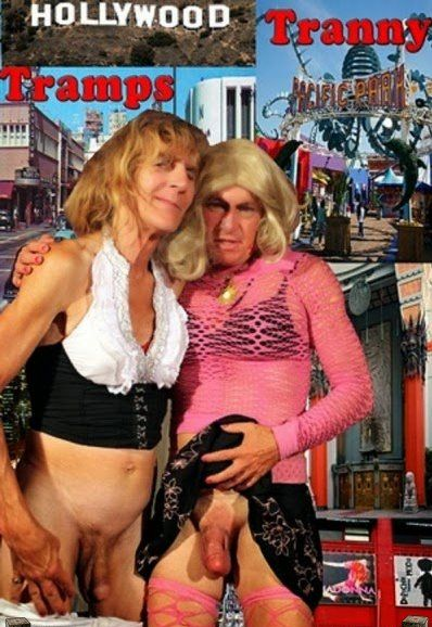 Hollywood Tranny Tramps (2010)