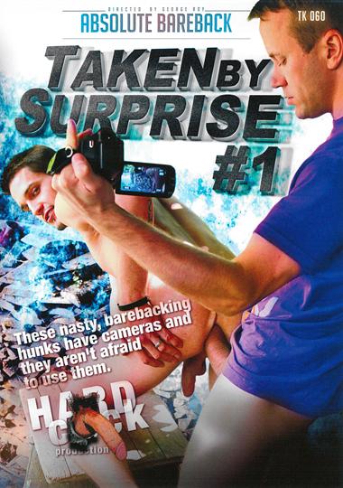Taken By Surprise (2014) - Gay Movies