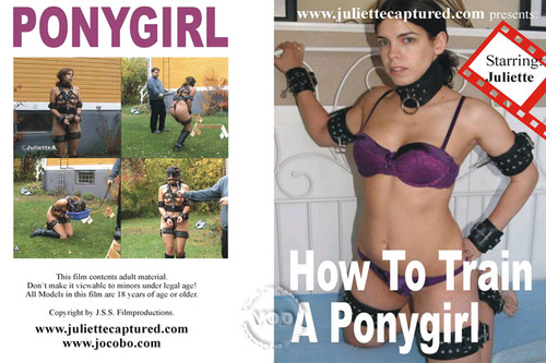 How To Train A Ponygirl