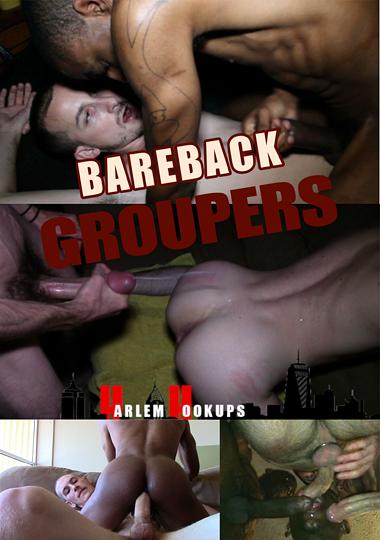 Bareback Groupers (2015) - Gay Movies