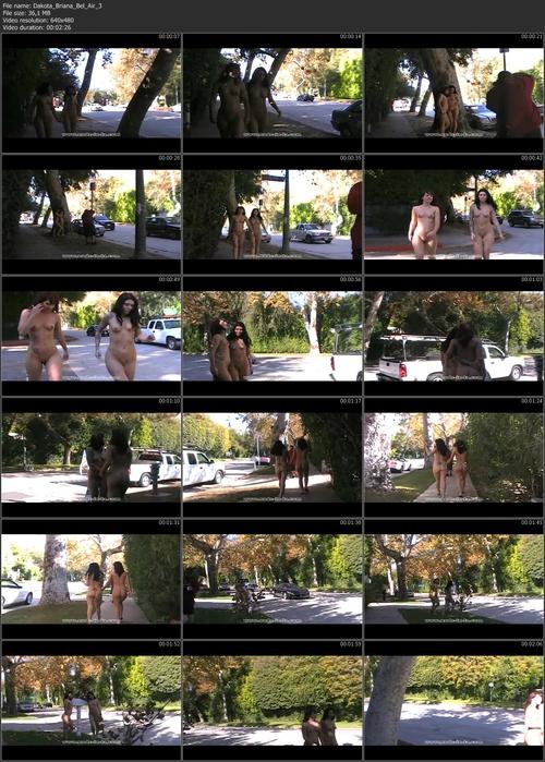 Fullvideoinfo: MPEG-4 Visual (XviD), 1937 Kbps, 30.000 fps