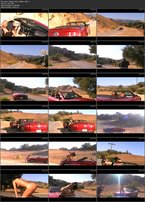 Fullvideoinfo: MPEG-4 Visual (XviD), 1924 Kbps, 29.970 fps
