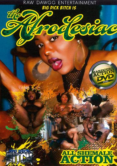 The Afrodesiac (2012)