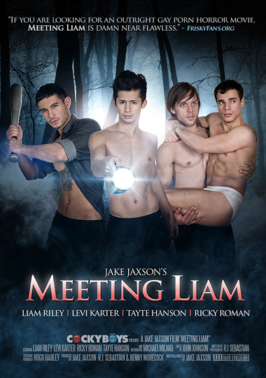 Meeting Liam (2015) - Gay Movies