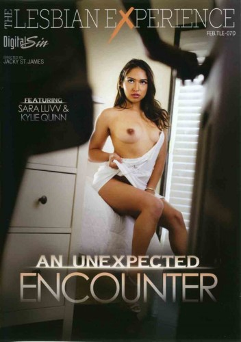 The Lesbian Experience - An Unexpected Encounter (2016)