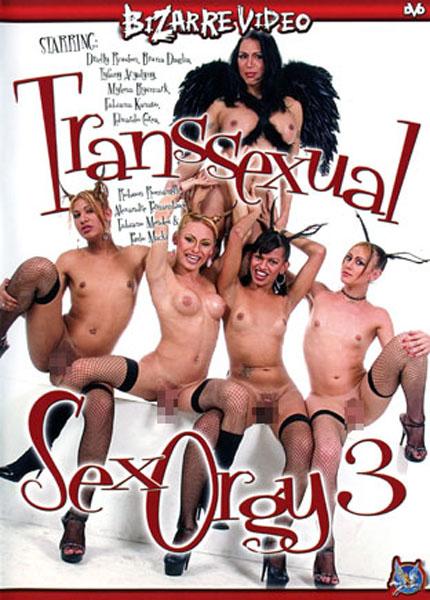 Transsexual Sex Orgy 3 (2006) - TS Tyfany Aryatyny