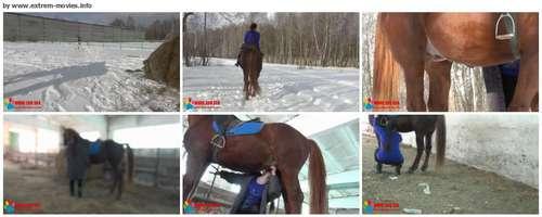 http://ist3-1.filesor.com/pimpandhost.com/1/_/_/_/1/3/m/D/z/3mDz5/136_ZHD_Horse%20on%20The%20Run_thumb_m.jpg
