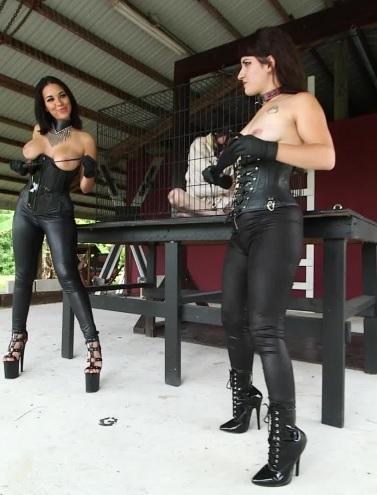Veronica Cohen & Kylie Rogue Cage POV