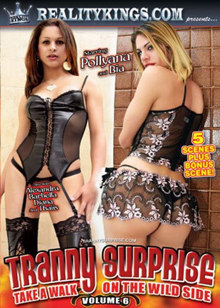 Tranny Surprise 6 (2009) - TS Diana Ferraz