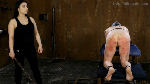 elite spanking and real pain hd hq new releases   page