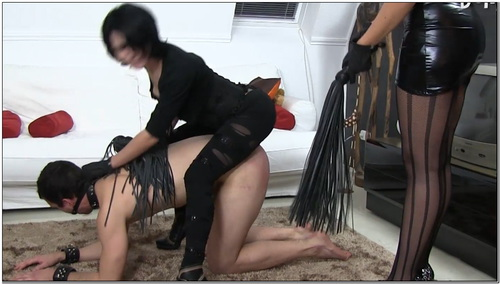 How To Use A Whip Female Domination