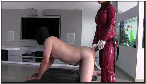 No More Fantasizing Female Domination