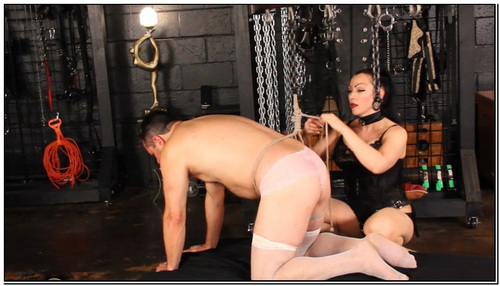 Bound For Ass Pounding Female Domination