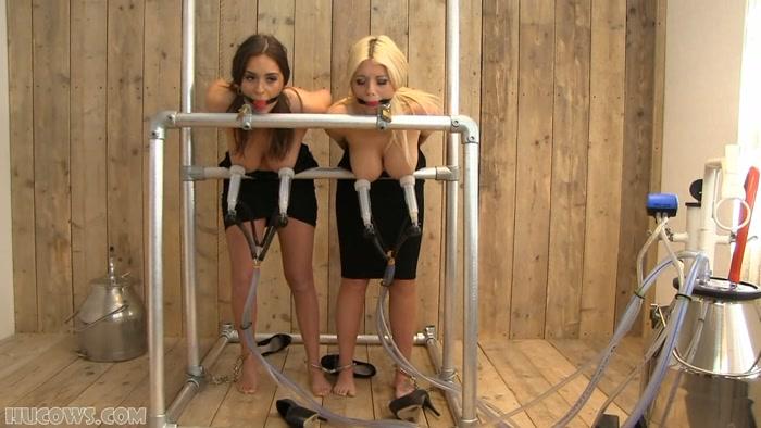 Busty women in garter belts pics