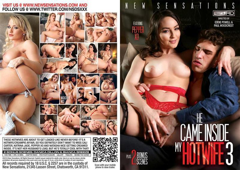 Porn Movies Plot 63