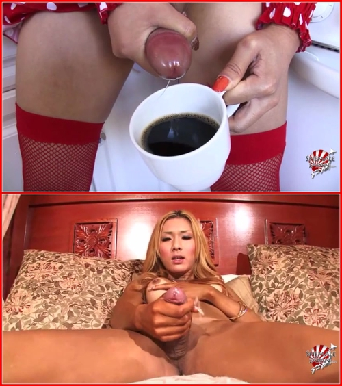 Shemale Japan Cumshot Cumpilation