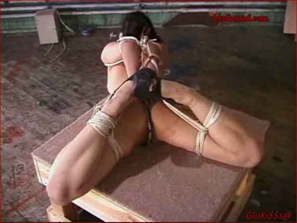 Hogtied and gangbanged