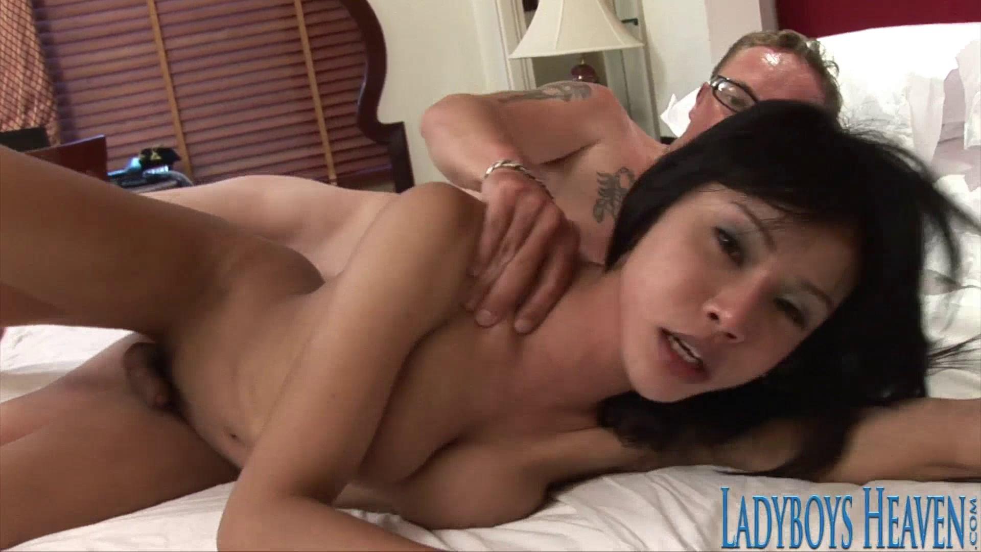 Free ladyboys heaven porn pics